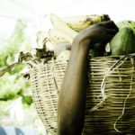 around_PaP_and_Jacmel-3